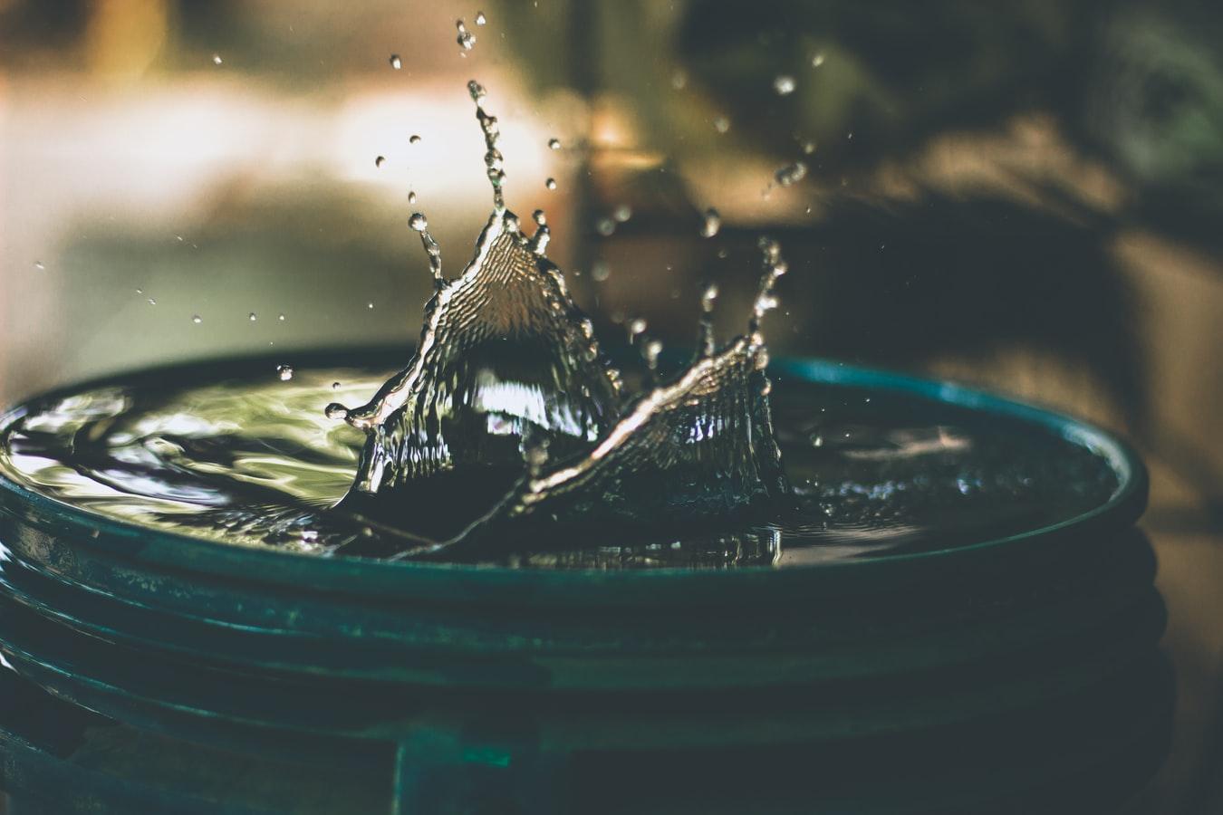 Acqua e composizione corporea
